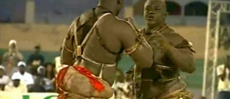 Article : Sénégal : Lutte avec frappe, on en parle aussi sur twitter